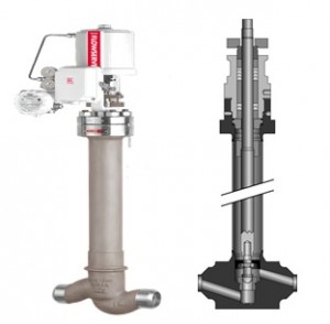 CRYOGENIC VALVES1
